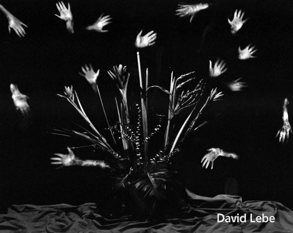 david-lebe_05