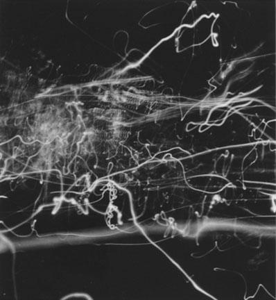 Nathan Lerner, Light Tapestry 1938